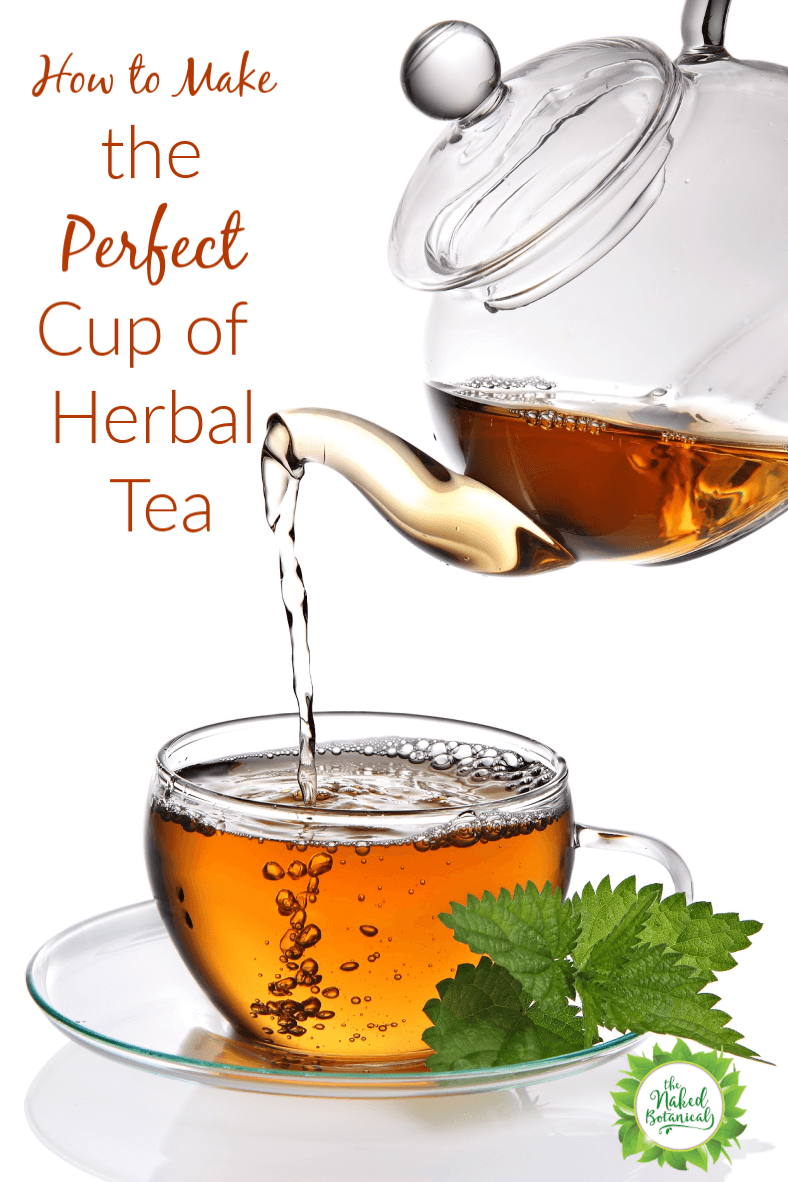 How to Make the Perfect Cup of Herbal Tea